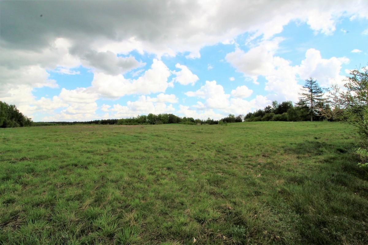 Działka siedliskowa, Głodowo, 50080.00m2 - Biuro Nieruchomości Partner - zdjęcie nr.4