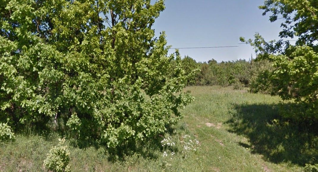 Działka pod bud. 1-rodz., Bojano, 1372.00m2 - zdjęcie nr.3